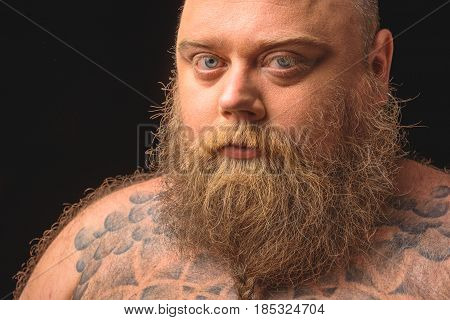 Portrait of severe naked male fatso looking forward with seriousness. Isolated