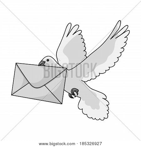 Post pigeon.Mail and postman single icon in monochrome style vector symbol stock illustration .