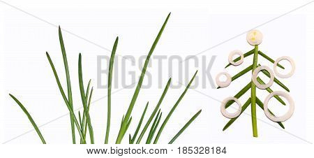 Green Onion Isolated On The White Background. Application