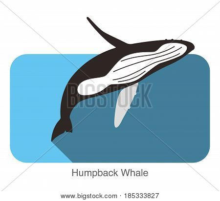 Humpback Whales Jumping In The Sea, Animal Flat Icon