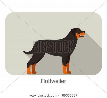 Rottweiler Dog Standing Flat Icon Design