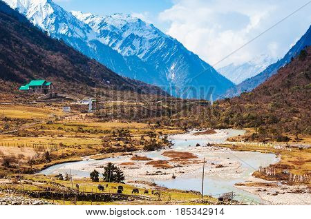Chopta Valley In North Sikkim India