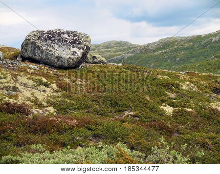 View on a Norwegian bolder in the mountains