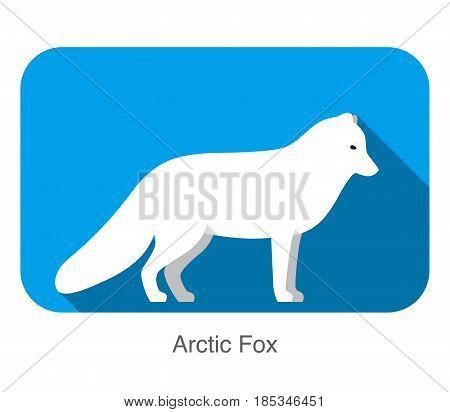 White Arctic fox standing, flat design illustration vector