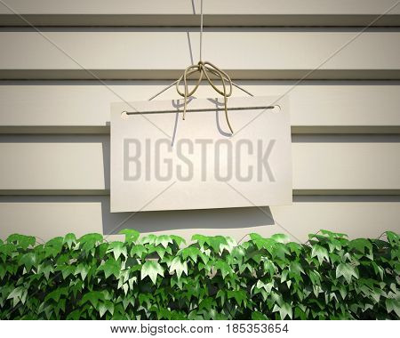 Blank sign hanging from a string with a white painted wooden background with climbing ivy 3D rendering