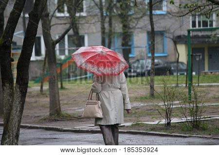 rainy spring city street with human walk under unbrellas