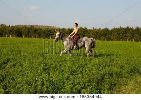 Female rider riding horse on green fields.