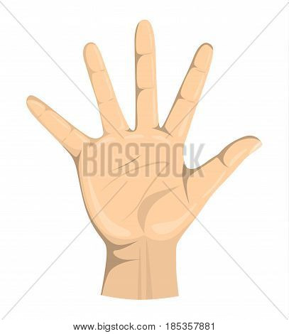Isolated hand palm on white background. Symbol of showing, wish.