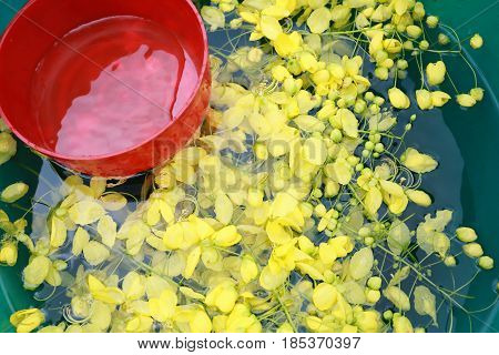 cassia fistula in water and have red water bowl for Songkran Festival in Thailand.