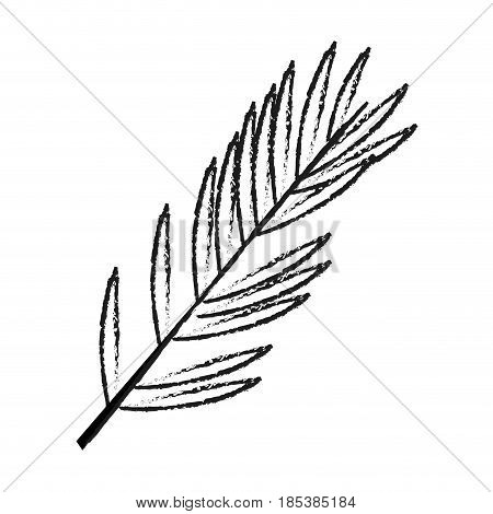 blurred silhouette image ramification with elongated leaves vector illustration