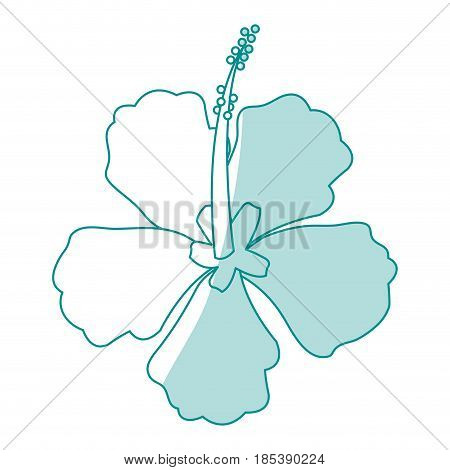 blue silhouette image Chinese rose with trumpet shaped petals vector illustration