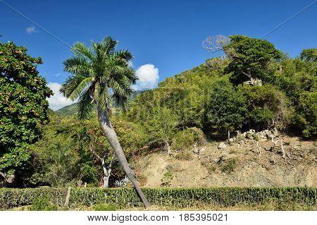Wiev on the Mountain range Sierra Maestra on Cuba.