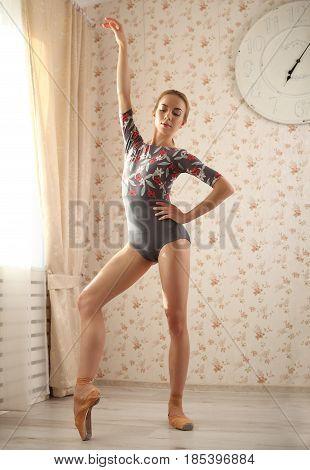 Portrait Of A Professional Ballerina Near Window In Sun Light In Home Interior. Ballet Concept. Cute