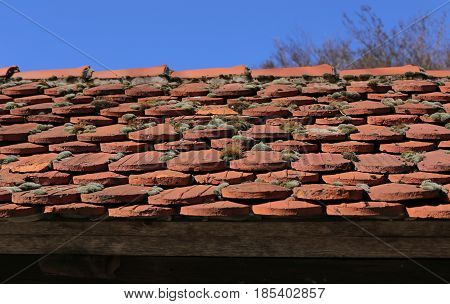 Rooftiles With Moss In Front Of Blue Sky
