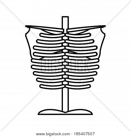 bone chest anatomy body medical line vector illustration