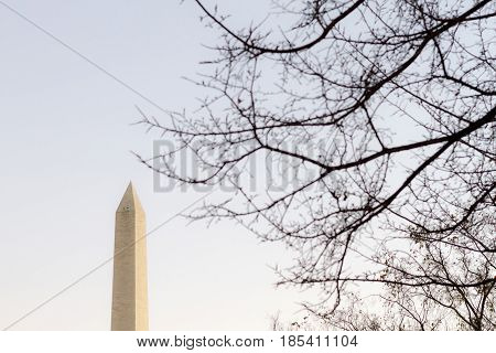 The Washington Memorial Was Built To Commemorate George Washington With Trees.