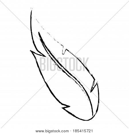 feather ink pen quill writing design vector illustration