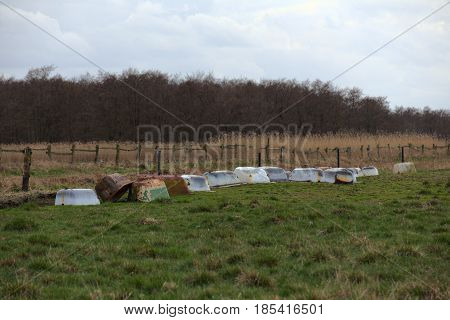 Meadow with old bathtubs near Greifswald Germany. poster