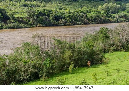 Taquari River And Farm