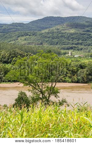 Corn Plantation And River