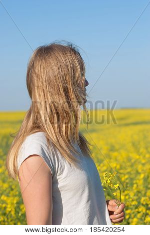 Young Woman, Blonde Relaxes In A Field Of Yellow Flowers