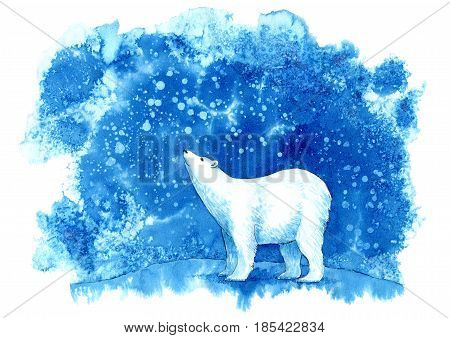 Polar bear, snowflakes and sky. Winter landscape with animals. Watercolor hand drawn illustration.