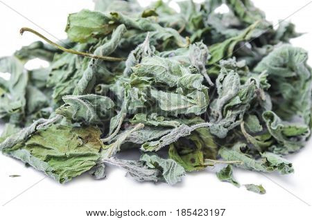 Dried common horehound herb (Marrubium vulgare) isolated on white background