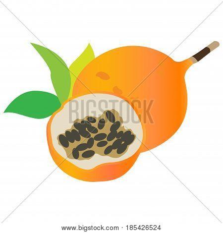 Isolated pair of sweet granadillas, Vector illustration