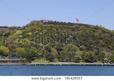 Hill In Istanbul City, Turkey