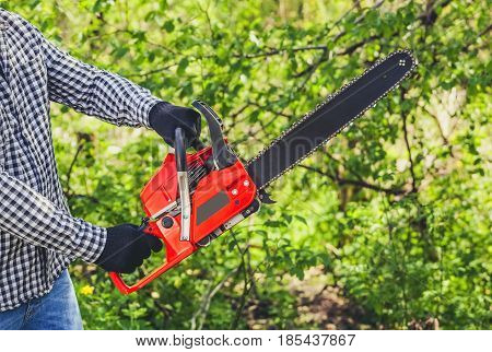 A Man - Lumberjack In A Black And White Checkered Shirt Sawing A Chainsaw In A Forest.