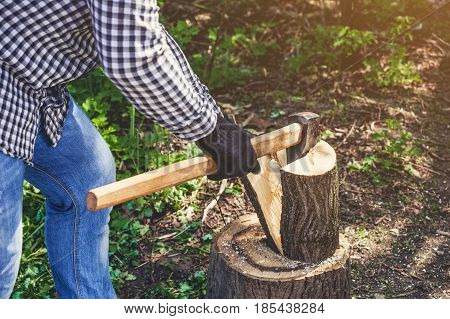 Male Lumberjack In The Black-and-white Plaid Shirt With An Ax Chopping A Tree In The Forest.