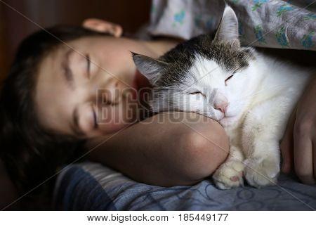 Teen Boy Sleep With Cat In Bed Hug