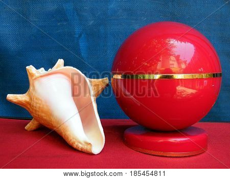 Beautiful Pink Sea shell and Red ball on blue background