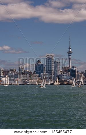 Auckland New Zealand - March 3 2017: City skyline seen from greenish ocean water under blue sky with some white clouds. Highrises Sky Tower and many white sail boats on water.
