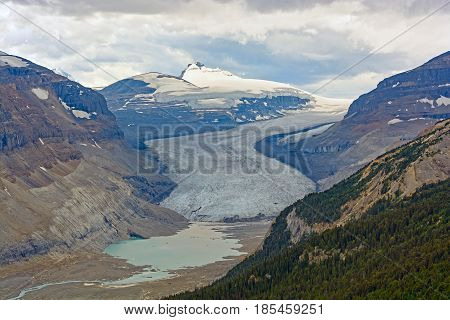 The Saskatchewan Glacier and its valley in the Jasper National Park in Alberta Canada