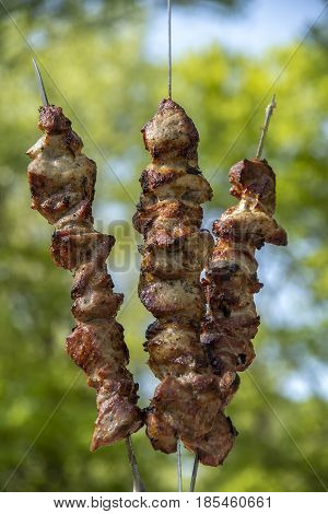Grilled skewers meat on coals and grass
