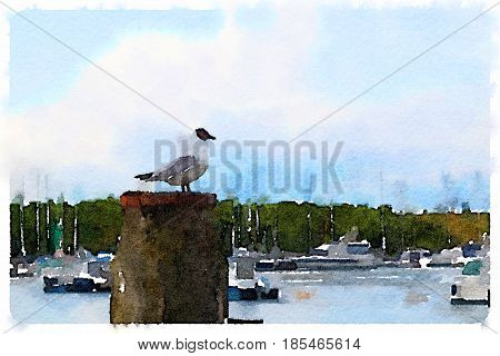 Digital watercolor painting of a seabird standing on a wooden post with a marina with boats in the background and trees and blue sky with clouds. With space for text.