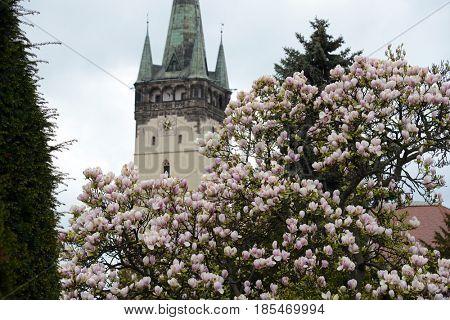 Presov in spring, Slovakia