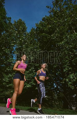 Athletic women exercising by jogging in nature.