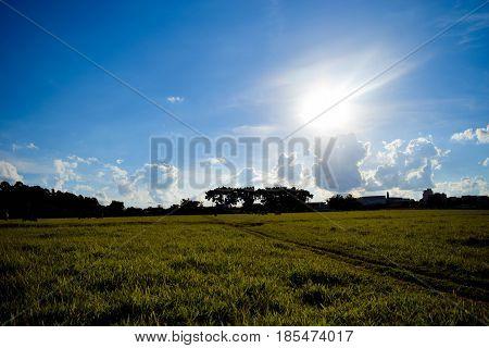 O pasto, bem conhecido por quem mora na cidade de Boituva.