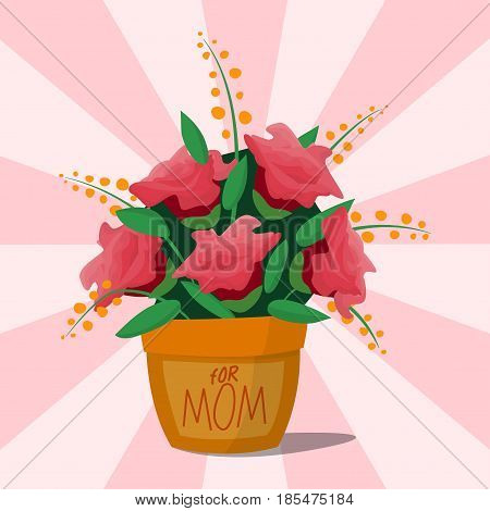 Flower pot botanical natural blossom flora beautiful bloom decoration vector illustration. Garden potted bouquet gerbera colorful decorative nature gift for mother holiday.