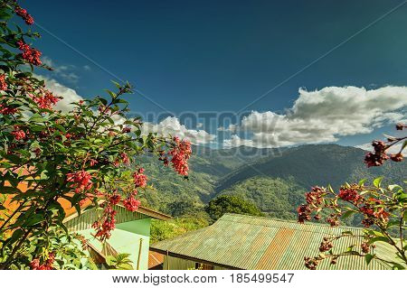 Blue Kanchenjunga mountain range in the morning tree with red seasonal flowers in foreground view from Okhrey Village Sikkim. Scenic view of great Himalaya India