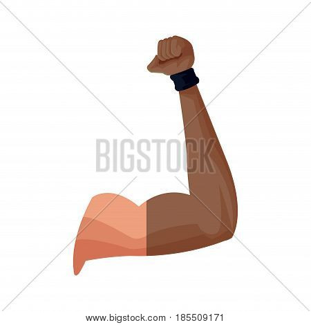 strong arm biceps muscle fitness vector illustration