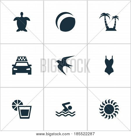 Vector Illustration Set Of Simple Beach Icons. Elements Palm, Taxi, Beverage And Other Synonyms Lemonade, Swallow And Cab.