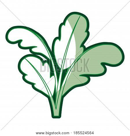 green silhouette of beet plant with thick contour vector illustration