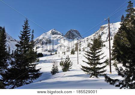 Peak Maliovica in winter National park Rila