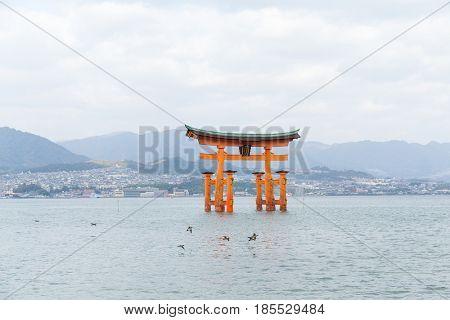 Floating torii gate of Itsukushima Shrine in Itsukushima island