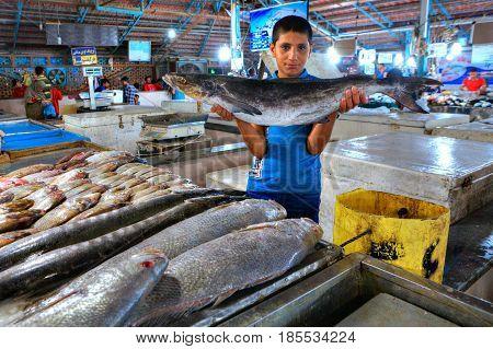 Bandar Abbas Hormozgan Province Iran - 15 april 2017: The boy salesman shows fresh fish at the indoor fish market.