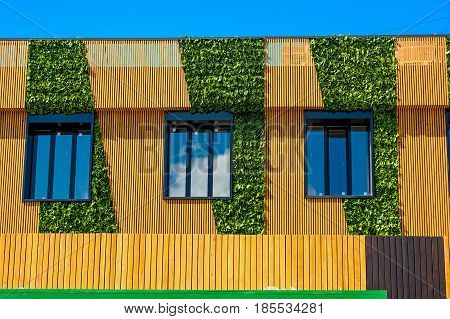 Sunlit brown wall of modern house with windows, wooden planks and green plants as part of wall decoration
