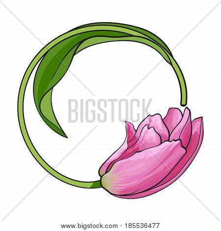 Round frame formed by one pink tulip flower with place for text, sketch vector illustration isolated on white background. Hand drawn pink tulip flower forming round frame, decoration element